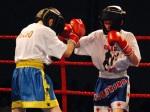Mamut na ringu